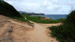 Trail along the ocean leading to Mahaulepu Beach