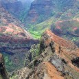 Waimea Canyon Ridge - Photo by Ray Gordon