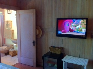 Ginger Room at the Kauai Beach Inn showing TV, Drink Cooler, and Private Bathroom