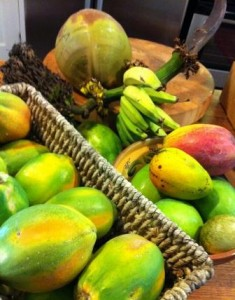 Fruits grown right on the Kauai Beach Inn property include papayas, bananas, mangoes, limes, coconut, avocado, and more!